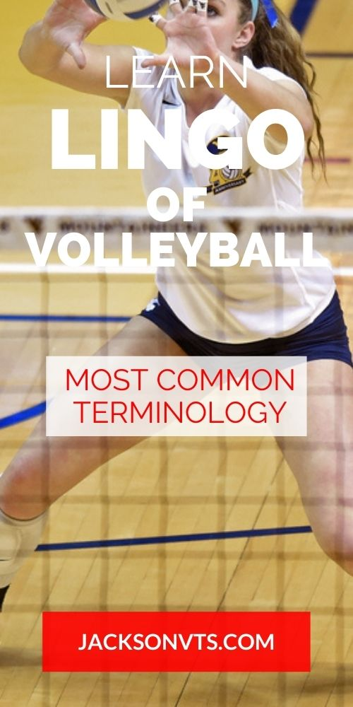 Lingo for Volleyball